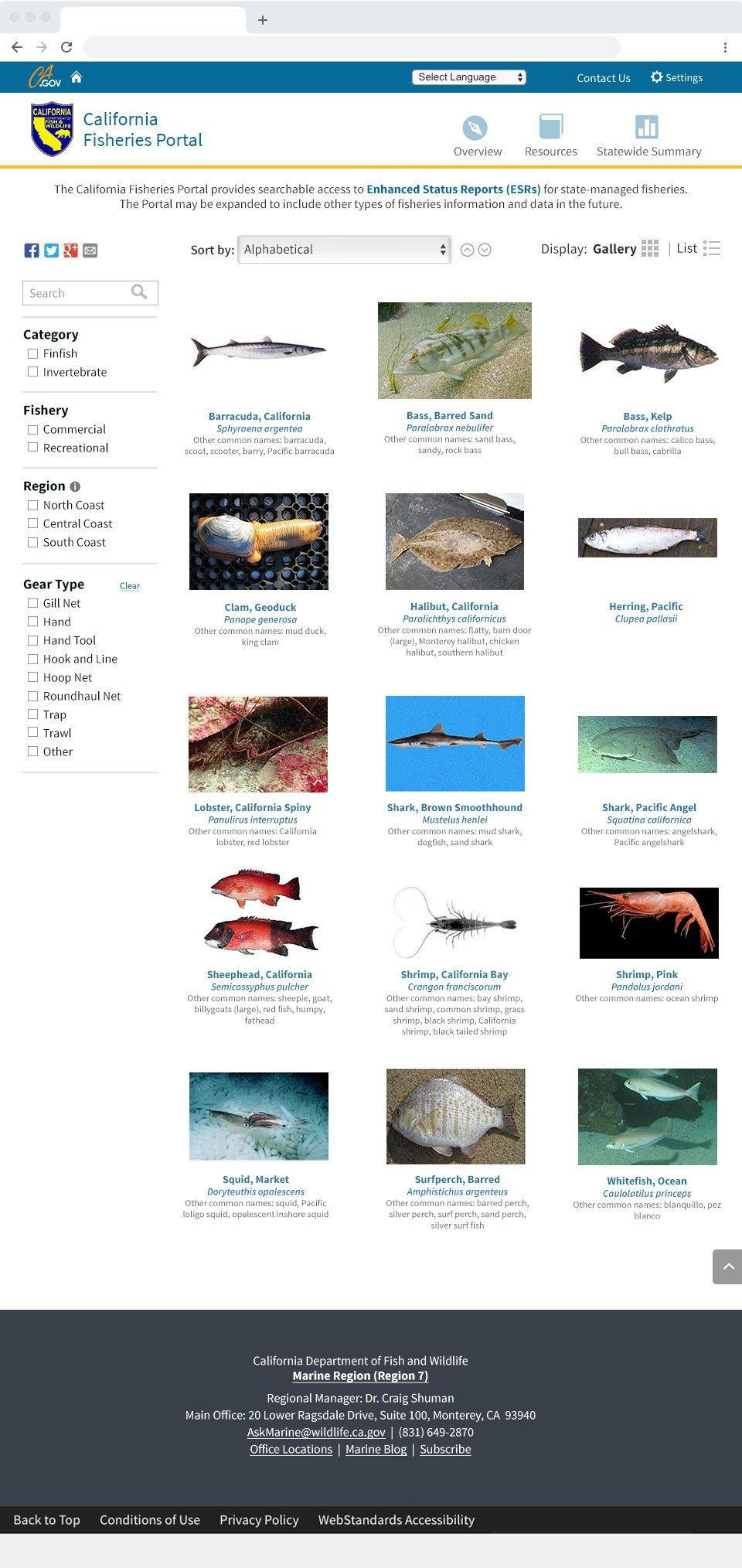 California Marine Species Portal Mockup