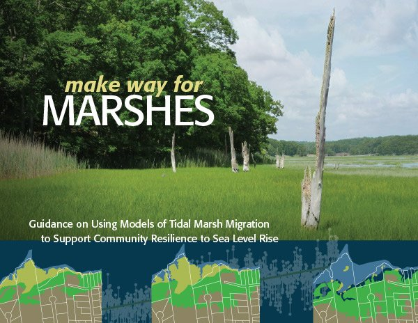 Marshes on the Move Cover